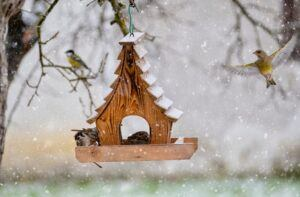 Bird table in the snow